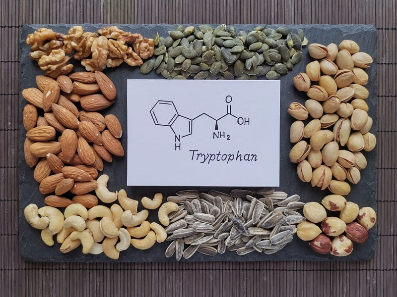 What Is L-Tryptophan